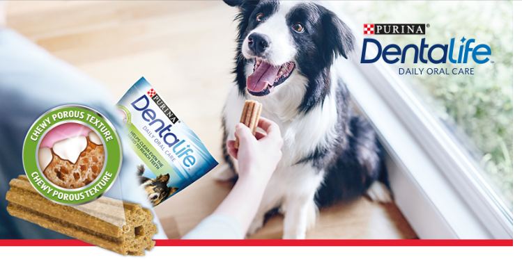 Free Dentalife Dental Dog Chew sticks
