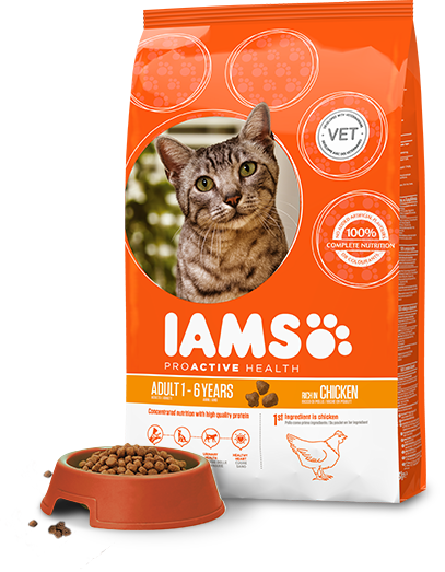 iams proactive health cat food free sample pack