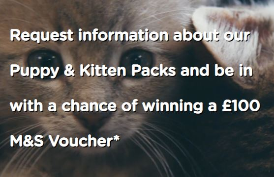 Puppy & Kitten Packs Win £100
