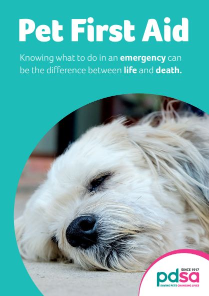 Free PDSA First Aid Guide
