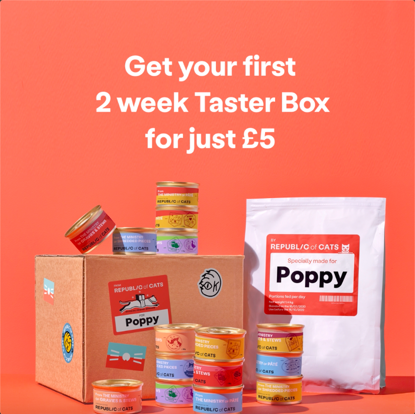 Republic of cats taster box discount