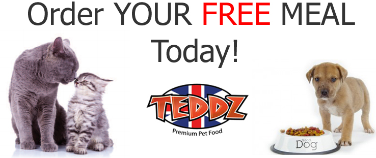 Free Teddz dog or cat meal