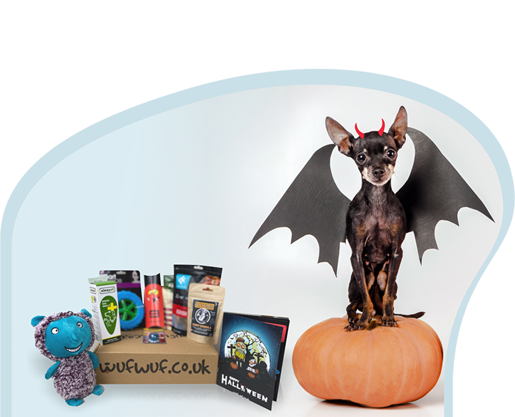 Wufwuf Halloween dog treat box discount voucher