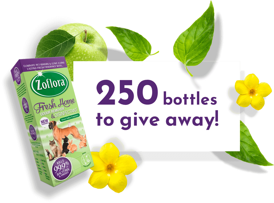 Free Bottle of Zoflora Pet Disinfectant
